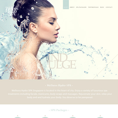 wellness hydro spa website home