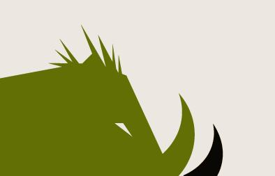 Business Brand Design for Boarskin