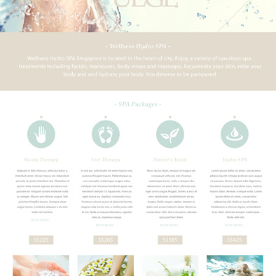 wellness hydro spa website about