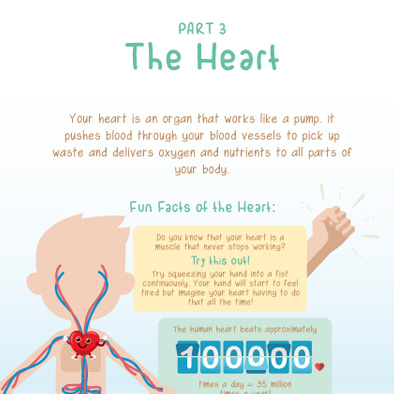 shf singapore heart foundation fun facts handbook