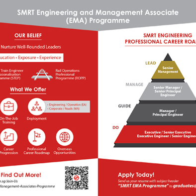 smrt ema flyer design back